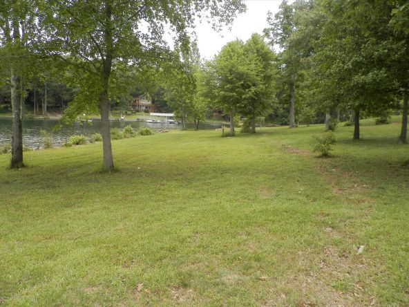 238 Brannon Point Overlook, Arley, AL 35541 Photo 13
