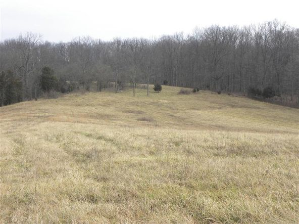 1739 Graves Rd., Stamping Ground, KY 40379 Photo 4