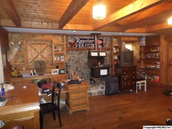 600 County Rd. 650, Cedar Bluff, AL 35959 Photo 5