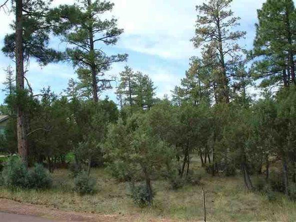 5315 Buffalo Trail Trail, Show Low, AZ 85901 Photo 3