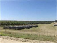 Home for sale: 2909 County Rd. 304, Comanche, TX 76442