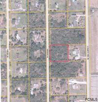 Home for sale: 285 Garden Ln., Bunnell, FL 32110