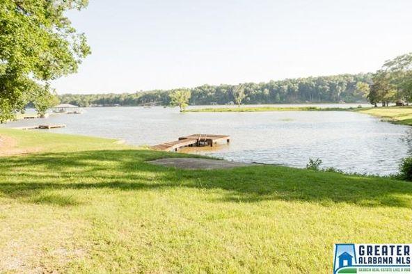 550 Blue River Dr., Lincoln, AL 35096 Photo 52