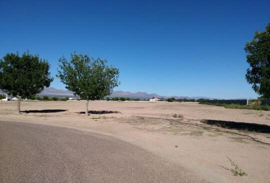 6655 W. Oak Ln., Pima, AZ 85543 Photo 8