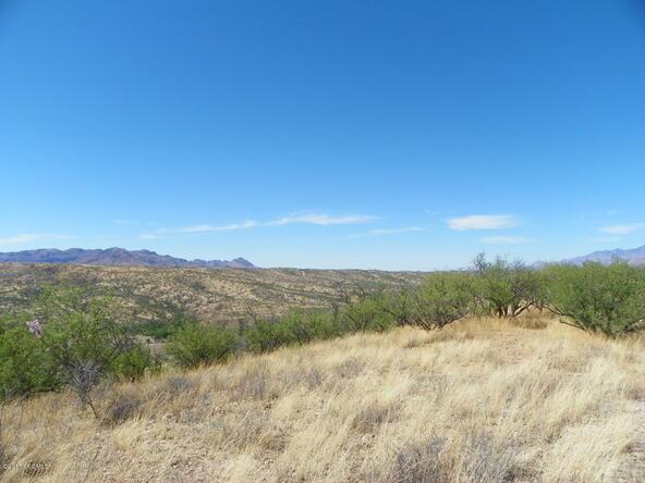594 Camino Kansas, Rio Rico, AZ 85648 Photo 3