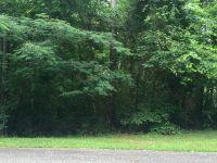 Home for sale: 5504 Grinding Stone Ln., Phenix City, AL 36867