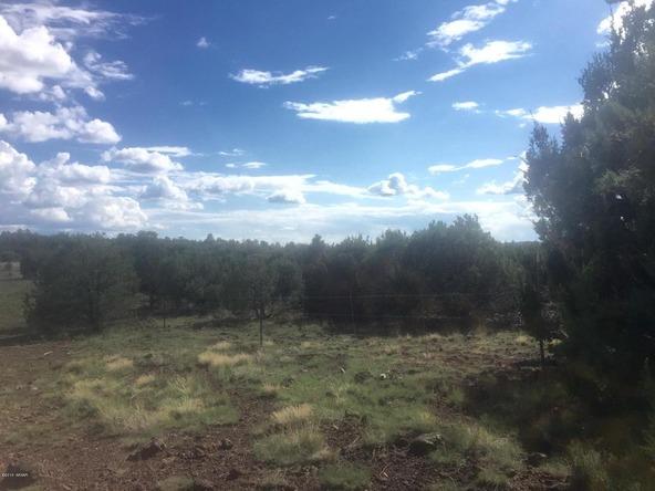 850 Cinder Pit Rd., Show Low, AZ 85901 Photo 46