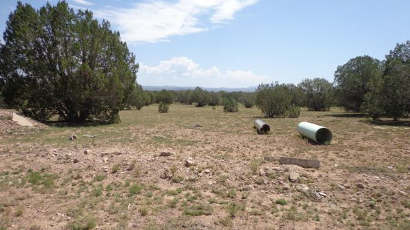 261 Juniperwood Ranch Lot 261, Ash Fork, AZ 86320 Photo 28