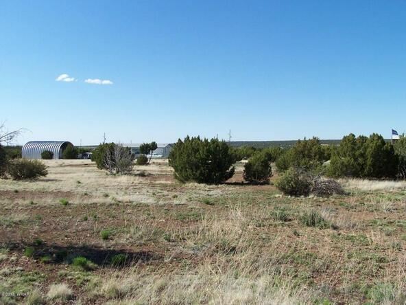 8482 Basalt Pl., White Mountain Lake, AZ 85912 Photo 12