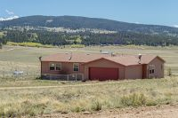 Home for sale: 1001 Wagon Wheel Rd., Hartsel, CO 80449