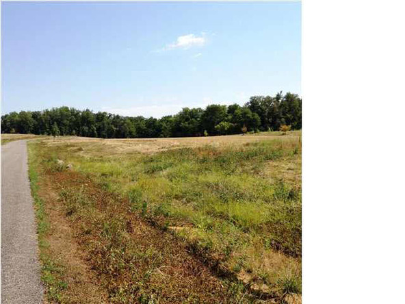 5980 Serenity Dr. Lot 5, Mount Vernon, IN 47620 Photo 29