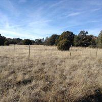 Home for sale: 14382 N. Brenda Rd., Prescott, AZ 86305