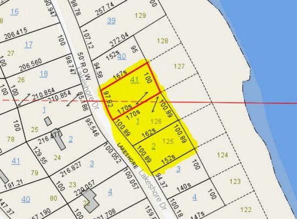 125 Lot 125,126,127 Lakeshore, Abbeville, AL 36310 Photo 8