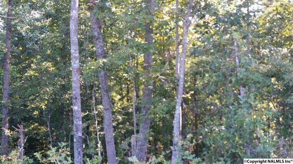 1088 County Rd. 788, Ider, AL 35981 Photo 1