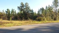 Home for sale: 0 Dobson Rd., Jay, FL 32565