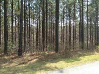 Home for sale: 289 Berry Patch Ln., Pittsboro, NC 27312