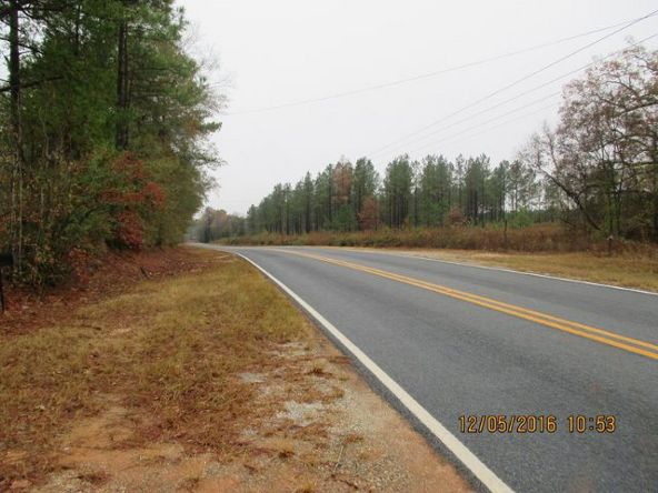 6808 County Rd. 57, Abbeville, AL 36310 Photo 13