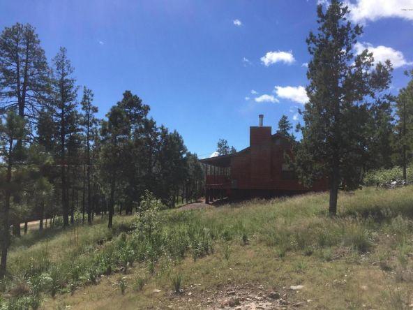 22 Cr 2074, Alpine, AZ 85920 Photo 22