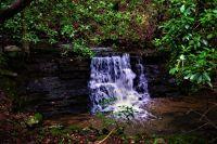 Home for sale: 11 Highlands Forest Dr., Cloudland, GA 30731
