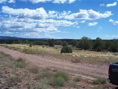 204 Juniperwood Rnch Un 3 Lot 204, Ash Fork, AZ 86320 Photo 14