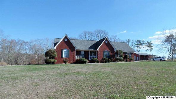 278 County Rd. 557, Grove Oak, AL 35975 Photo 12