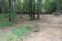 Home for sale: Lot 22 Cardinal Cove, Grenada, MS 38901