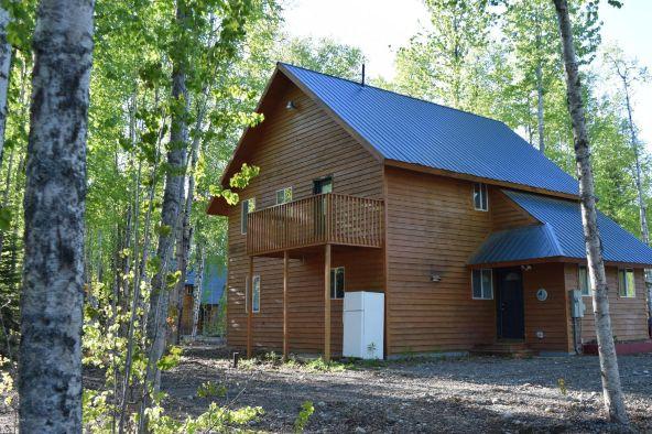 24923 W. Schwager's. Cir., Willow, AK 99688 Photo 27
