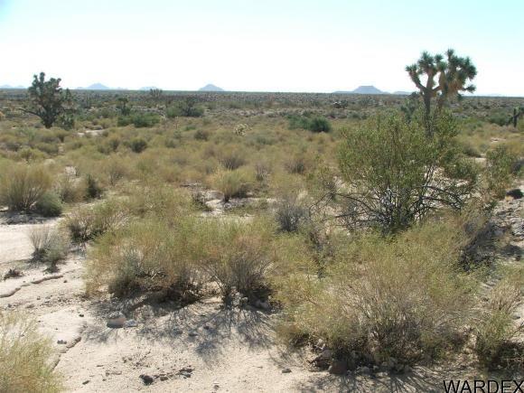 1752 E. Boriana Mine Rd., Yucca, AZ 86438 Photo 11