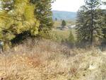 Lot 9 Clear Creek Estates #13, Boise, ID 83716 Photo 3