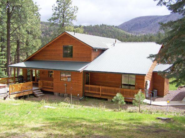 1 County Rd. 2153, Alpine, AZ 85920 Photo 7