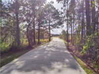Home for sale: 12525 Sweet Hill Rd., Polk City, FL 33868