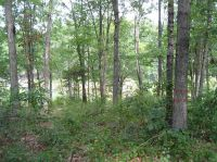 Home for sale: Lot 35&36 Overlook Dr., Fair Play, SC 29643