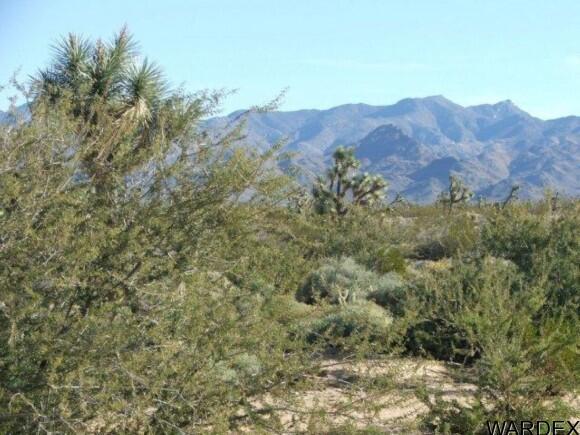 3529-B Arroyo Rd., Yucca, AZ 86438 Photo 20