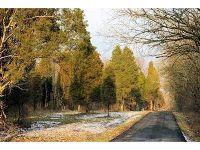 Home for sale: 15 Pine Run Ln., Batavia, OH 45103
