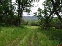 Home for sale: Tbd Hubbard Creek Rd., Paonia, CO 81428