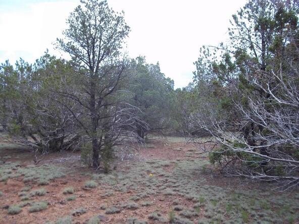 1142 E. Alimos Way, Williams, AZ 86046 Photo 5