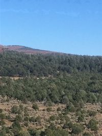 Home for sale: Lot 5 Section 17,20, Tn 26 N., Rg. 05e, Canjilon, NM 87515