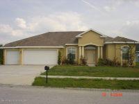 Home for sale: 18156 Rivard Blvd., Brooksville, FL 34604