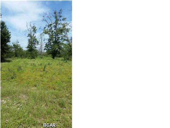12724 Hwy. 231 Highway, Youngstown, FL 32466 Photo 17