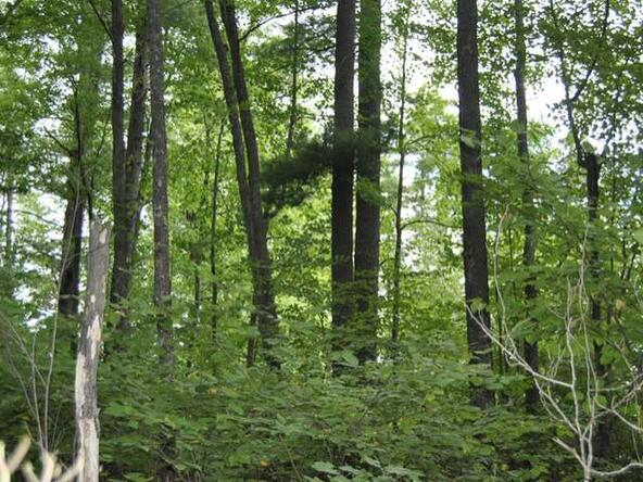 Lot 13 Sunset Dr., Tomahawk, WI 54487 Photo 38