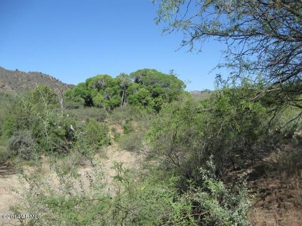 10000 S. St. Rt 69 & Copper Rd. --, Mayer, AZ 86333 Photo 3