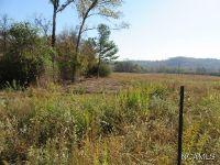 Home for sale: 00 Hinds Rd., Blountsville, AL 35031