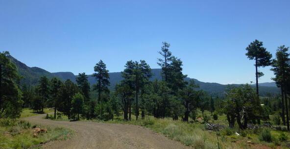 220 W. Zane Grey Cir., Christopher Creek, AZ 85541 Photo 29