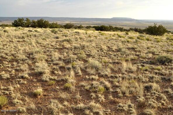 297 Woodridge Ranch, Concho, AZ 85924 Photo 9