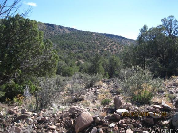 00 N. Willows Ranch Rd., Kingman, AZ 86401 Photo 6
