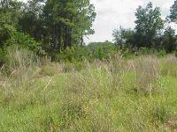 Home for sale: Parcel 1&2 Antioch Cemetery Rd., Ponce De Leon, FL 32455