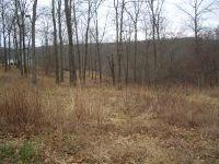 Home for sale: Lot 6 Woods Fork Ridge, Highlandville, MO 65669