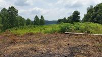 Home for sale: 2 Majors Cemetery Rd., Lynchburg, TN 37352