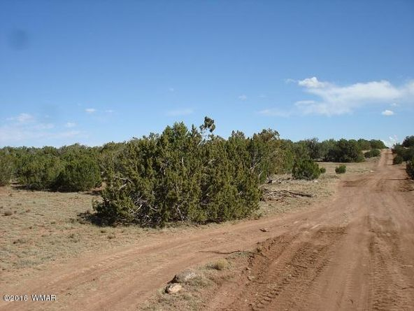 9073 Cibola Dr., White Mountain Lake, AZ 85912 Photo 3