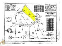 Home for sale: 174 Sharp Mountain Pkwy, Jasper, GA 30143